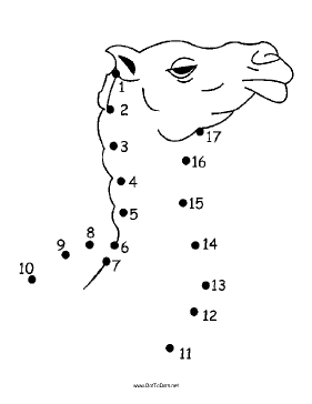 Camel Dot To Dot Puzzle