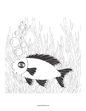 Fish 1 Dot To Dot Puzzle