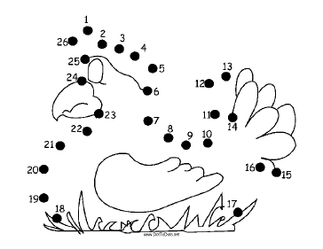 Hen Dot To Dot Puzzle